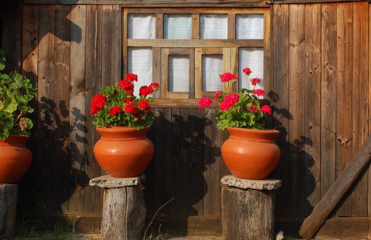 Kwiaty, doniczki, wazoniki – parapetowa dekoracja